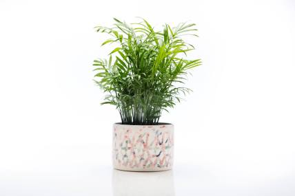Cybele_BPilon_planter
